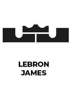 Lebron James the King